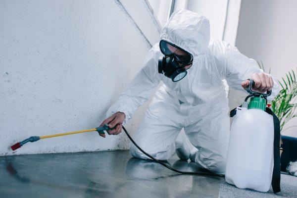 Mitarbeiter bei Ozonbehandlung