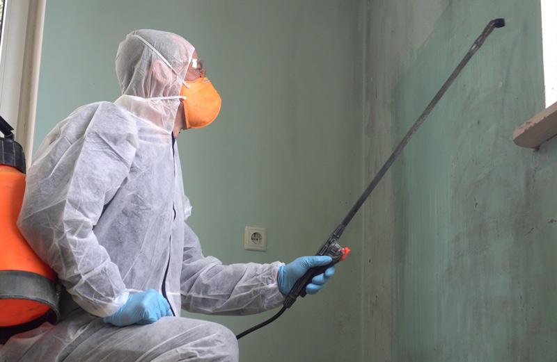 Wamd-Behandlung von unangenehmen Gerüchen mit Ozon
